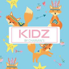 Kidz Zilver. de Vos Collectie