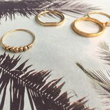 R517 Palm Gold Steel_