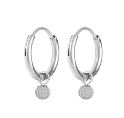 E55 Historic Coin Earrings Shiny Steel