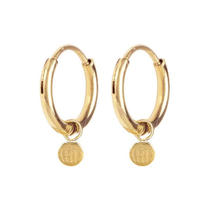 E56 Historic Coin Earrings Gold Steel