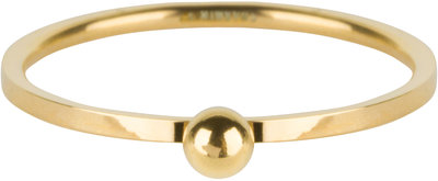 R529 Dot Ring Gold Steel