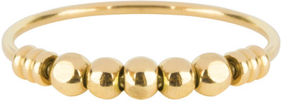 R517 Palm Gold Steel