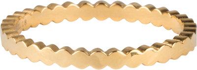 R701 Basic Crown Gold Steel