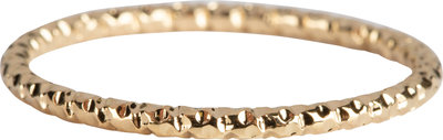 R799 Hooked On You Gold Steel