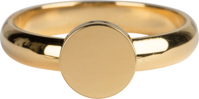 R827 Pudgy Seal Ring Round  Gold Steel