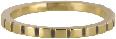 RING R440 GOLD 'STEEL BASICALLY'