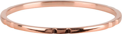 R810 Small Basics 6 engravings Rose Gold
