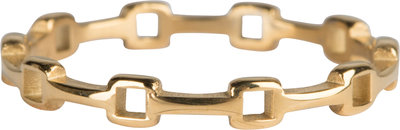 R821 Cool junction Gold Steel