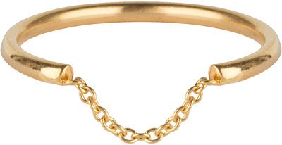 R573 Chained Gold Steel