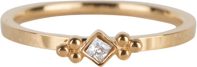 R616 Royal Square Gold Steel Crystal CZ