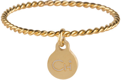R569 Dangling Coin Gold Steel