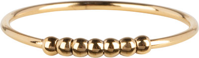 R777 Palm Small Gold Steel