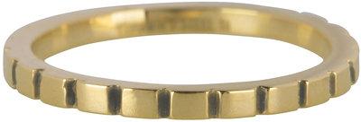 RING R440 GOLD 'STEEL BASICALLY'