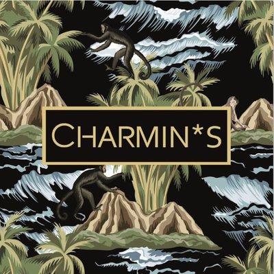5537 Charmin's Verpakking/ Display