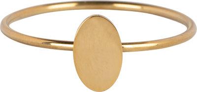 R719 Minimalist Oval Gold Steel