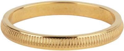 R604 Stripes Gold Steel