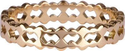 R909 Double trouble Goldplated steel Ring