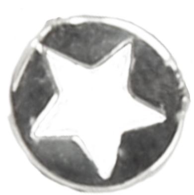 LL10 'Star' Earring