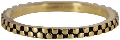 Ring R452 Gold 'Pointy Steel'