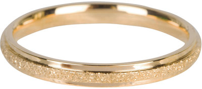 564-charmin's-ring-sanded-shiny-gold-steel